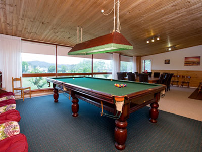 Bluebush Estate Billiard Room