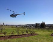 Helicopter Flights Hunter Valley